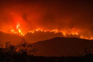Whittier Fire